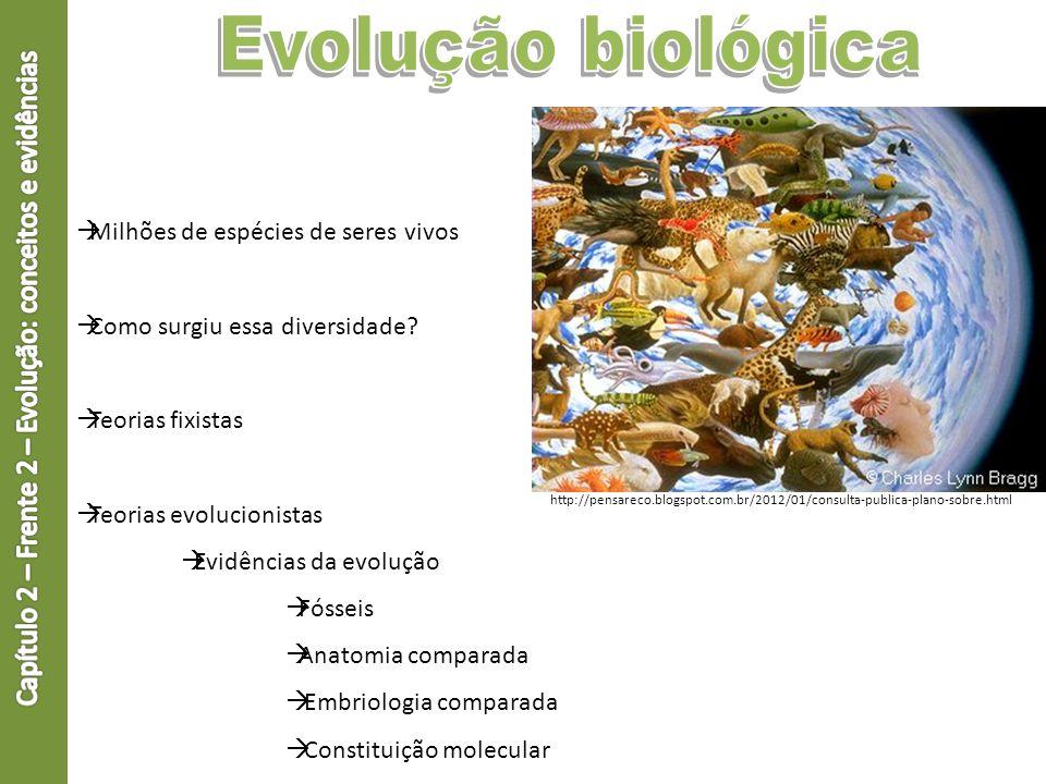 Milhões de espécies de seres vivos Como surgiu essa diversidade? Teorias fixistas Teorias evolucionistas Evidências da evolução Fósseis Anatomia compa