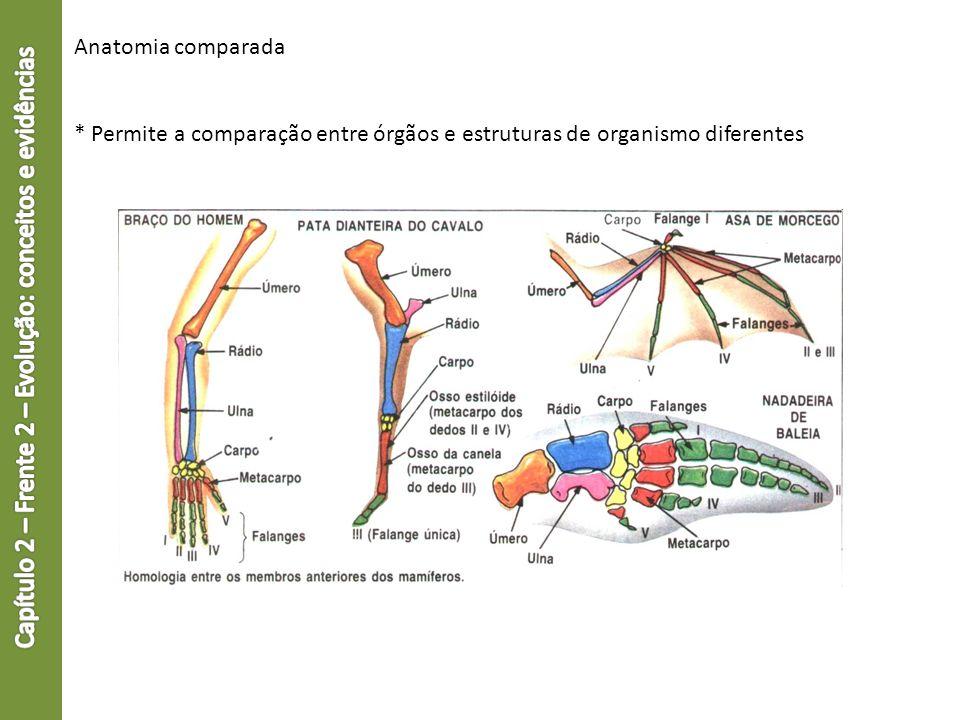 Anatomia comparada * Permite a comparação entre órgãos e estruturas de organismo diferentes