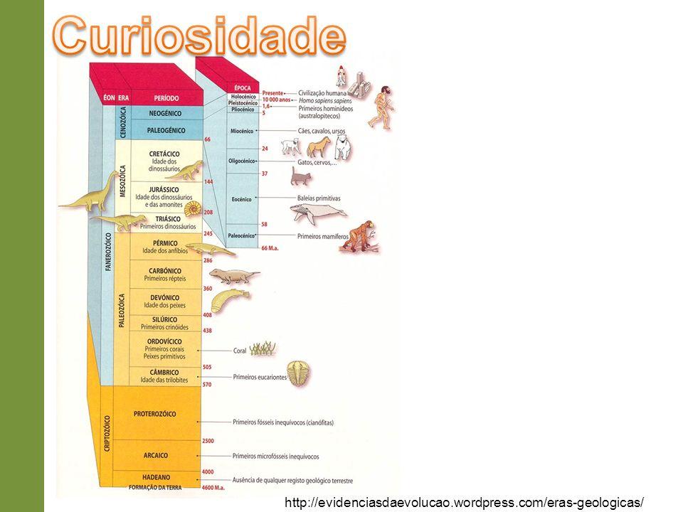 http://evidenciasdaevolucao.wordpress.com/eras-geologicas/
