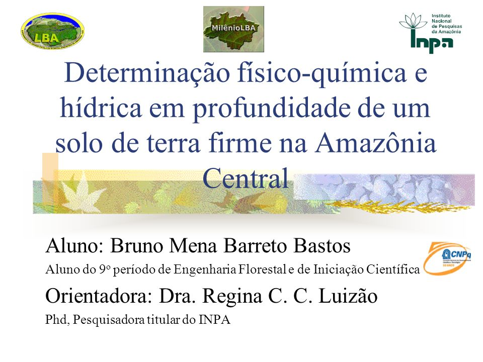 Determinação físico-química e hídrica em profundidade de um solo de terra firme na Amazônia Central Aluno: Bruno Mena Barreto Bastos Aluno do 9 o perí