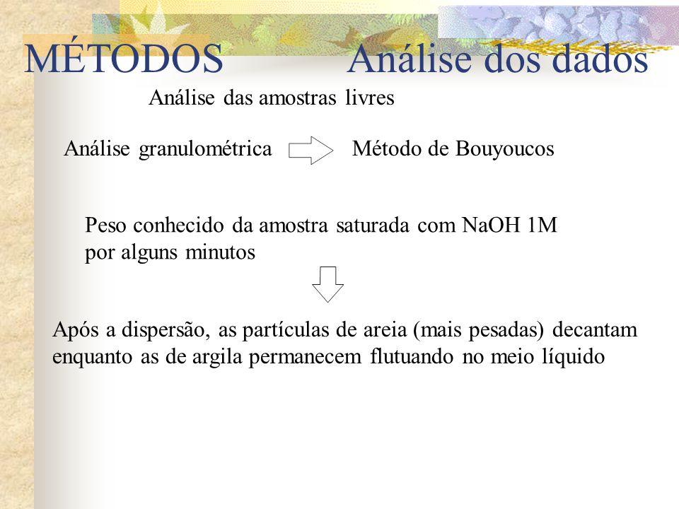 Análise das amostras livres Análise granulométricaMétodo de Bouyoucos Peso conhecido da amostra saturada com NaOH 1M por alguns minutos Após a dispers