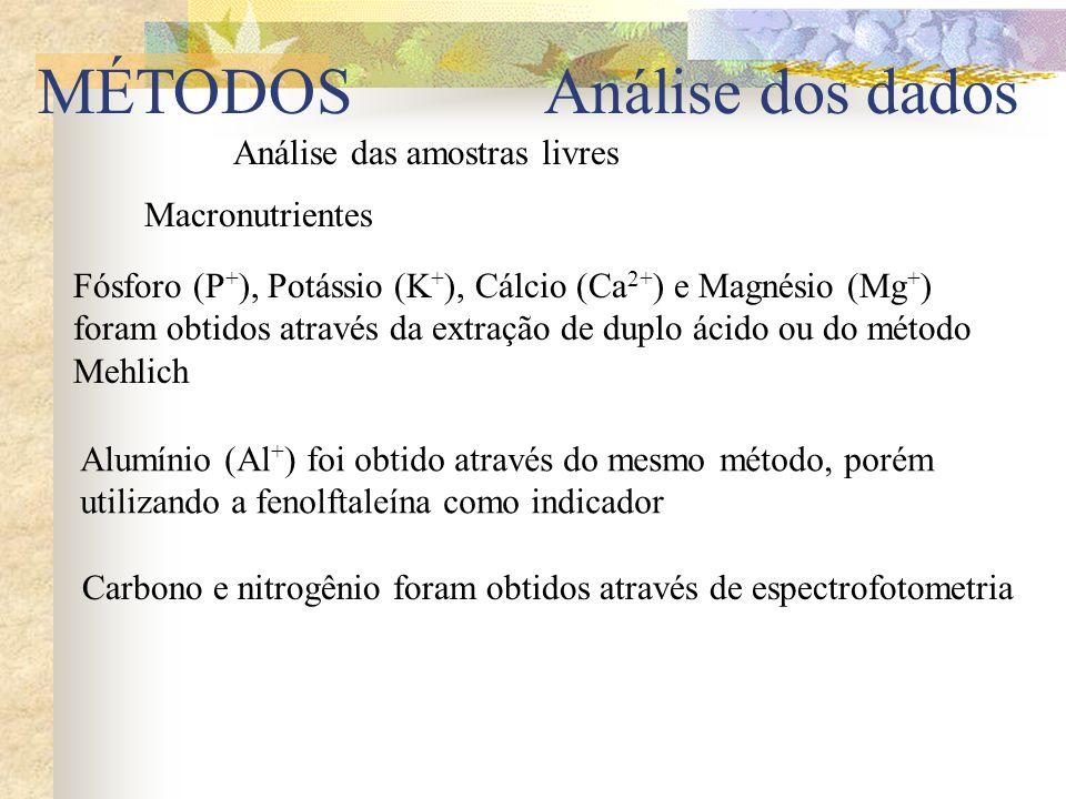 Análise das amostras livres Fósforo (P + ), Potássio (K + ), Cálcio (Ca 2+ ) e Magnésio (Mg + ) foram obtidos através da extração de duplo ácido ou do