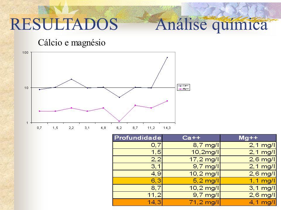 RESULTADOS Cálcio e magnésio Análise química