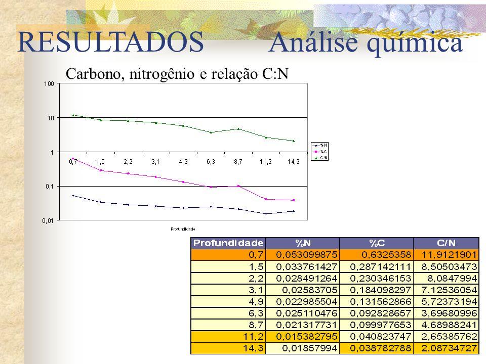 RESULTADOS Carbono, nitrogênio e relação C:N Análise química