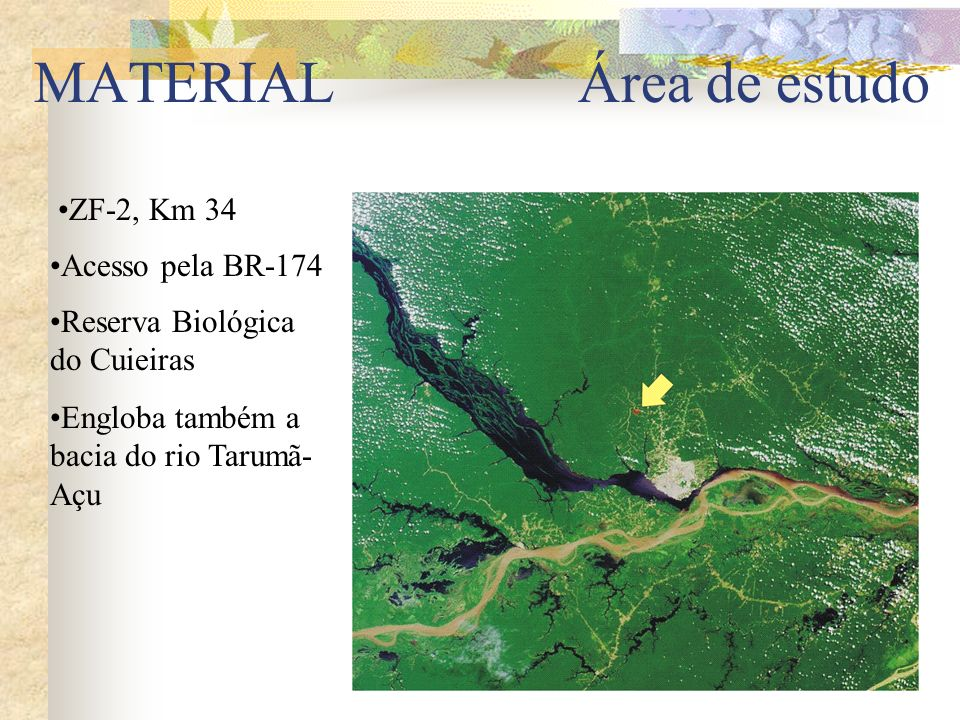Engloba também a bacia do rio Tarumã- Açu MATERIAL Área de estudo ZF-2, Km 34 Acesso pela BR-174 Reserva Biológica do Cuieiras