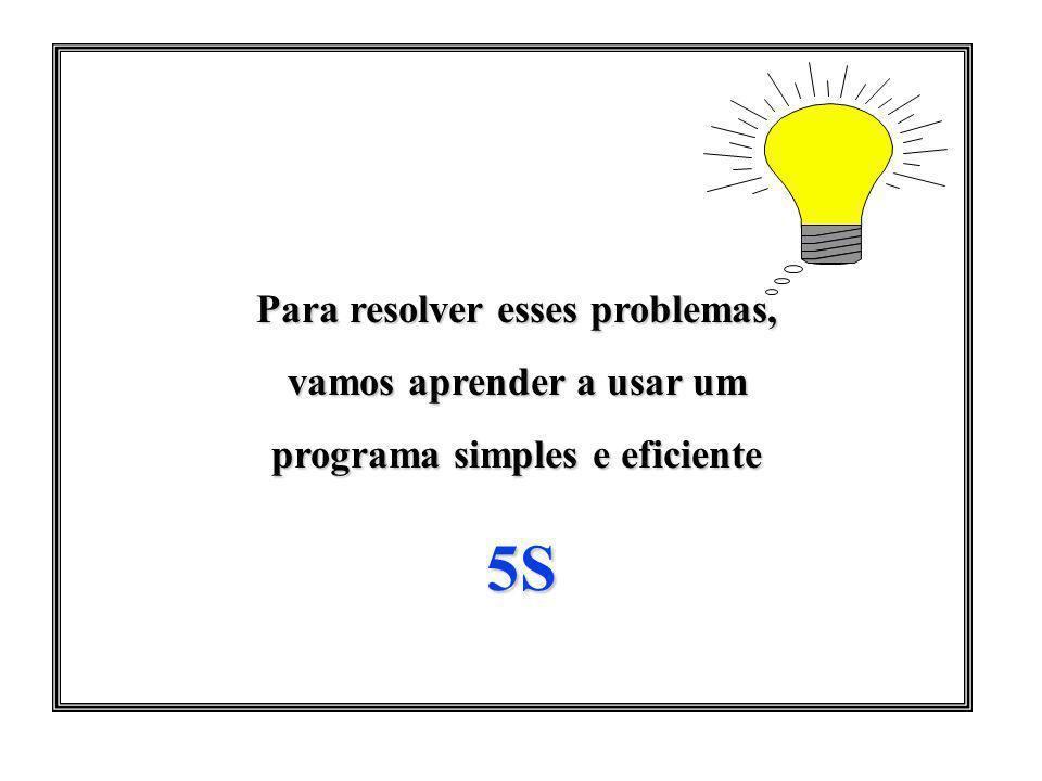 Para resolver esses problemas, vamos aprender a usar um programa simples e eficiente 5S