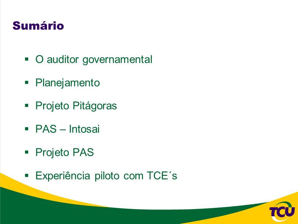 Sumário O auditor governamental Planejamento Projeto Pitágoras PAS – Intosai Projeto PAS Experiência piloto com TCE´s