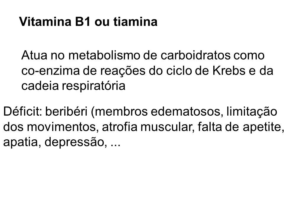 Vitamina B1 ou tiamina Atua no metabolismo de carboidratos como co-enzima de reações do ciclo de Krebs e da cadeia respiratória Déficit: beribéri (mem