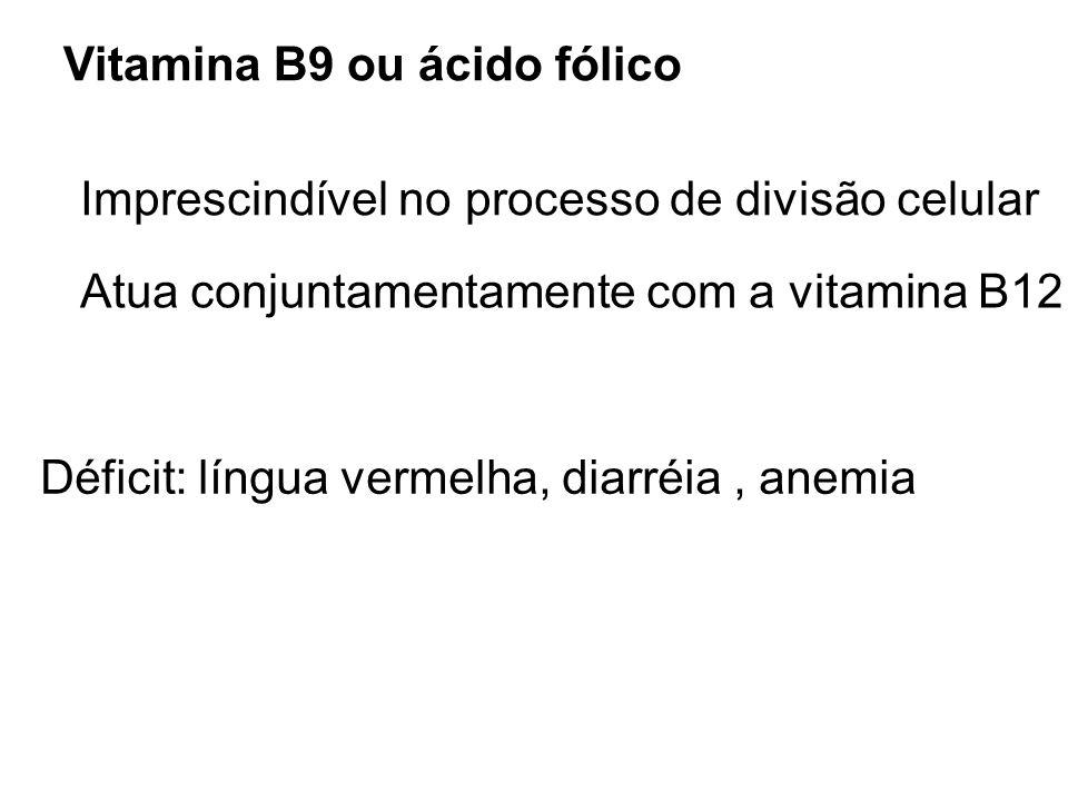 Vitamina B9 ou ácido fólico Imprescindível no processo de divisão celular Déficit: língua vermelha, diarréia, anemia Atua conjuntamentamente com a vit