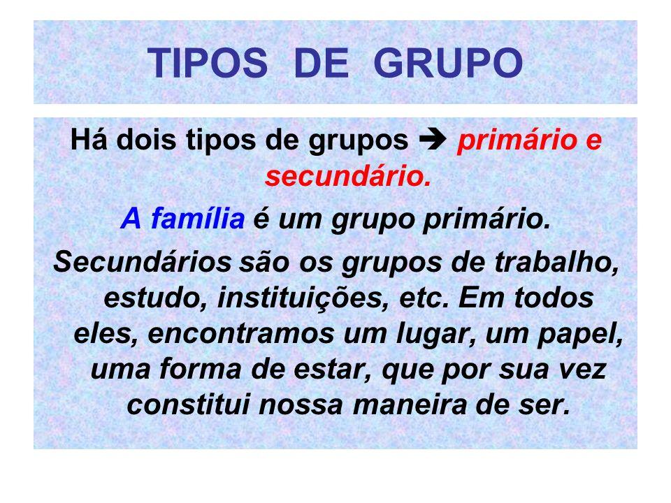 TIPOS DE GRUPO Há dois tipos de grupos primário e secundário. A família é um grupo primário. Secundários são os grupos de trabalho, estudo, instituiçõ