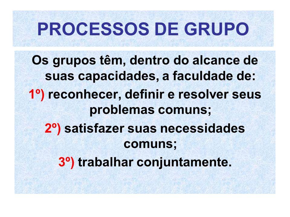 PROCESSOS DE GRUPO Os grupos têm, dentro do alcance de suas capacidades, a faculdade de: 1º) reconhecer, definir e resolver seus problemas comuns; 2º)
