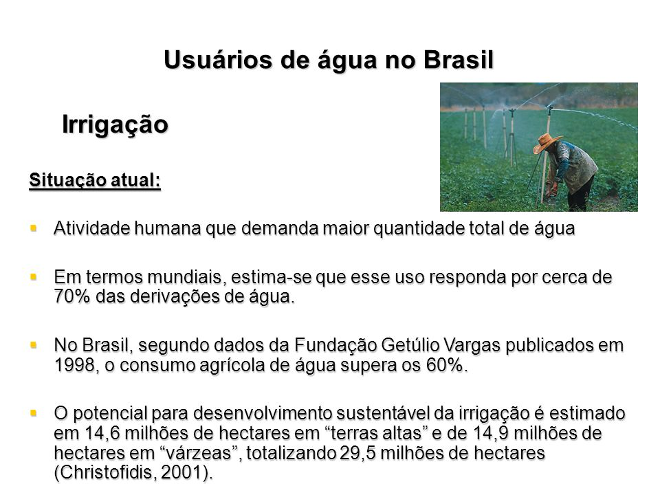 Usuários de água no Brasil Irrigação Situação atual: Atividade humana que demanda maior quantidade total de água Atividade humana que demanda maior qu