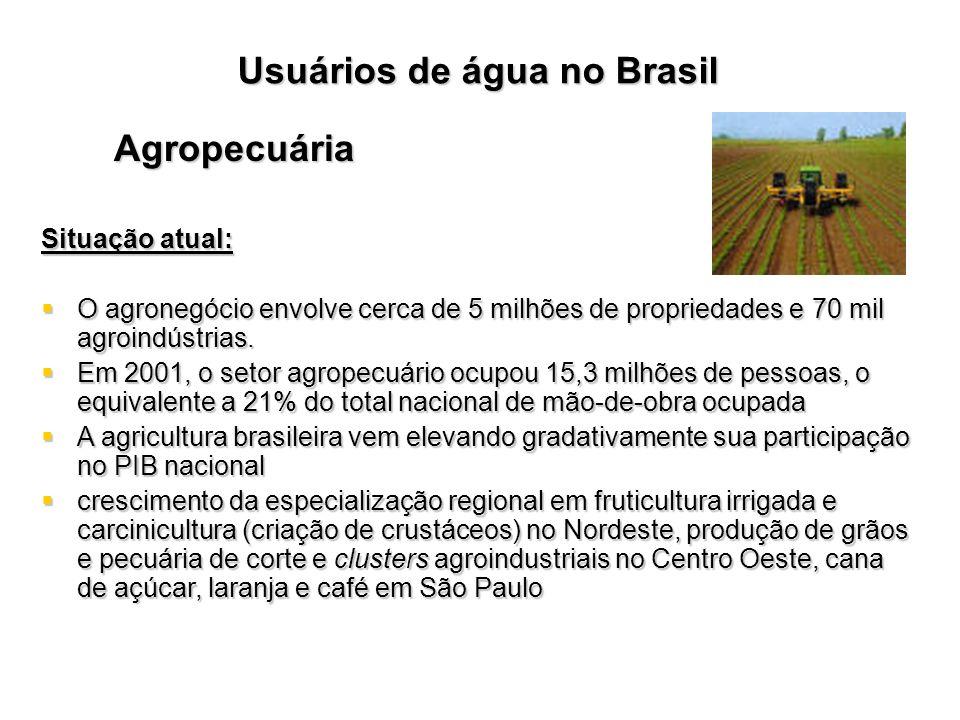 Usuários de água no Brasil Agropecuária Situação atual: O agronegócio envolve cerca de 5 milhões de propriedades e 70 mil agroindústrias. O agronegóci
