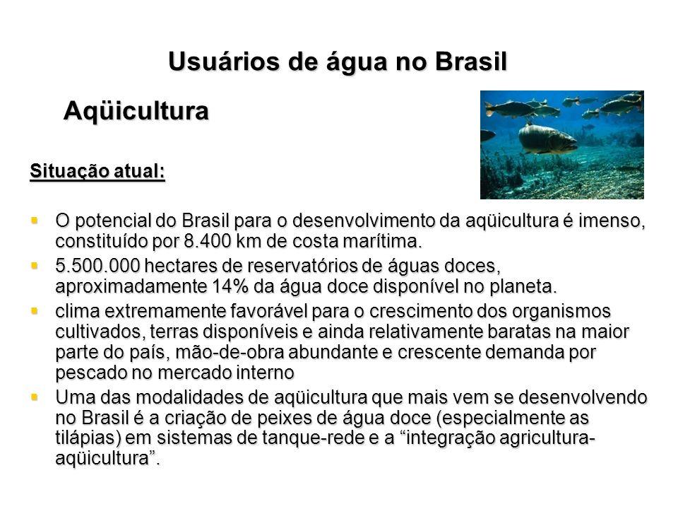 Aqüicultura Situação atual: O potencial do Brasil para o desenvolvimento da aqüicultura é imenso, constituído por 8.400 km de costa marítima. O potenc