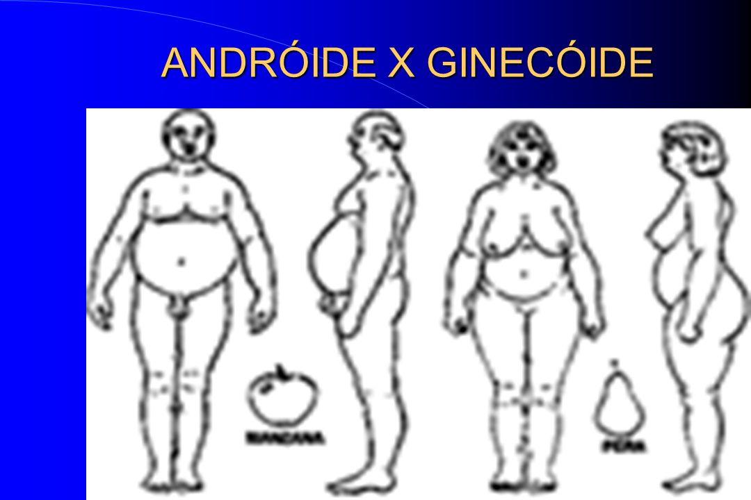 ANDRÓIDE X GINECÓIDE