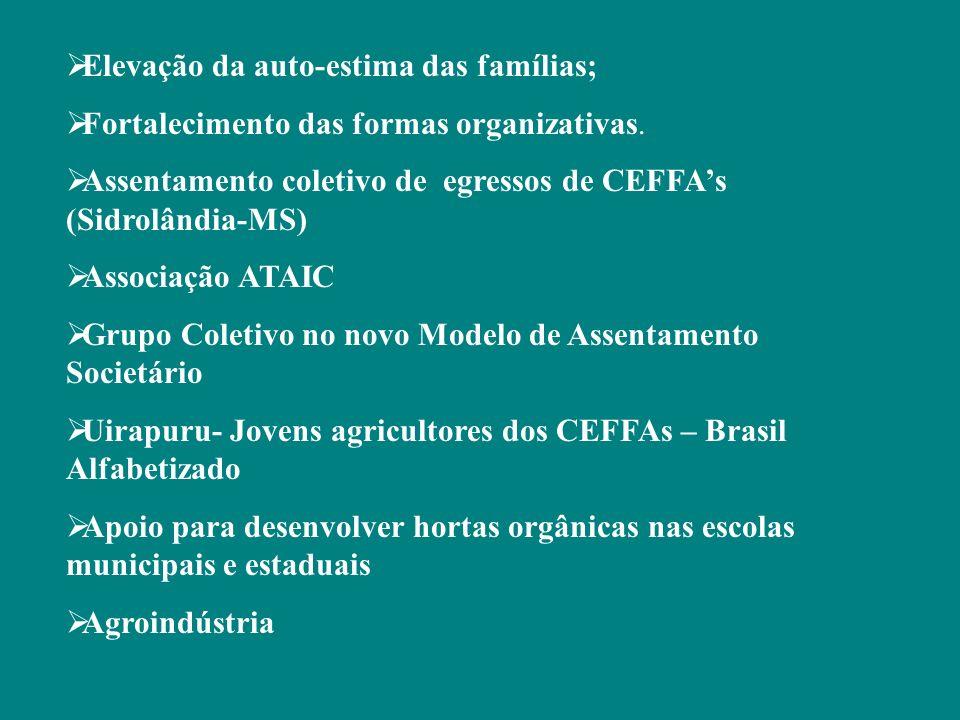 Elevação da auto-estima das famílias; Fortalecimento das formas organizativas. Assentamento coletivo de egressos de CEFFAs (Sidrolândia-MS) Associação