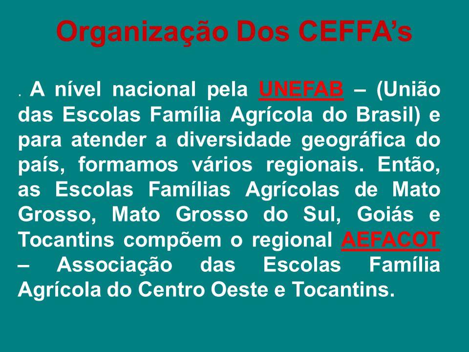 Panorama Nacional dos CEFFAs 214 Centros em funcionamento; 25.000 Jovens em Formação; 50.000 Jovens Formados; Presentes em 18 Estados da Federação; Presentes em 870 Municípios; 889 Monitores (as); 241 Professores (as); 342 Auxiliares.