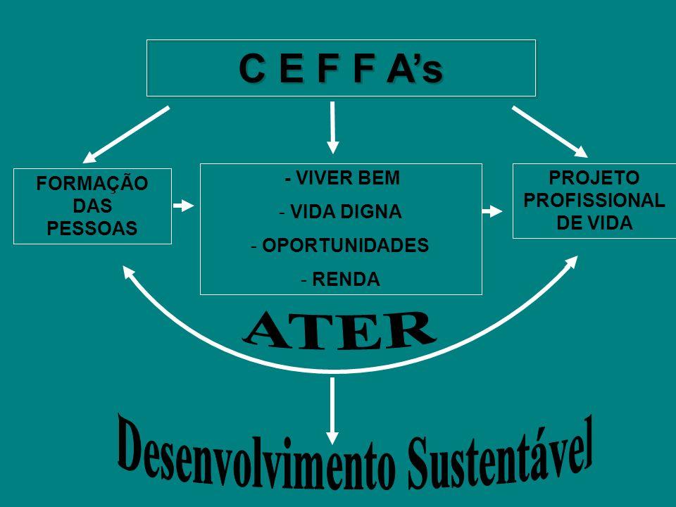 METAS ESTABELECIDAS PARA PRODUÇÃO DE ALIMENTO NA EFAITAQ 4º ANO - 2007; PRODUZIR DE 50 A 60% DOS ALIMENTOS CONSUMIDOS NA E F A; 5º ANO - 2008; PRODUZIR DE 60 A 75% DOS ALIMENTOS CONSUMIDOS NA E F A; Estabilidade na produção de alimentos para manutenção da EFAITAQ.