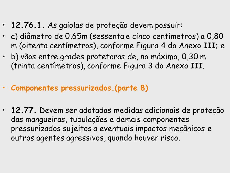 12.76.1. As gaiolas de proteção devem possuir: a) diâmetro de 0,65m (sessenta e cinco centímetros) a 0,80 m (oitenta centímetros), conforme Figura 4 d