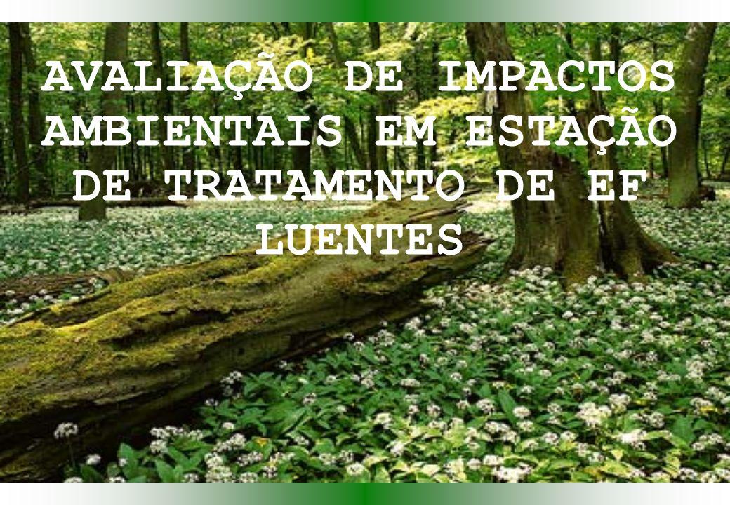 AVALIAÇÃO DE IMPACTOS AMBIENTAIS EM ESTAÇÃO DE TRATAMENTO DE EF LUENTES