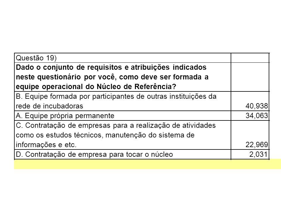 Questão 19) Dado o conjunto de requisitos e atribuições indicados neste questionário por você, como deve ser formada a equipe operacional do Núcleo de