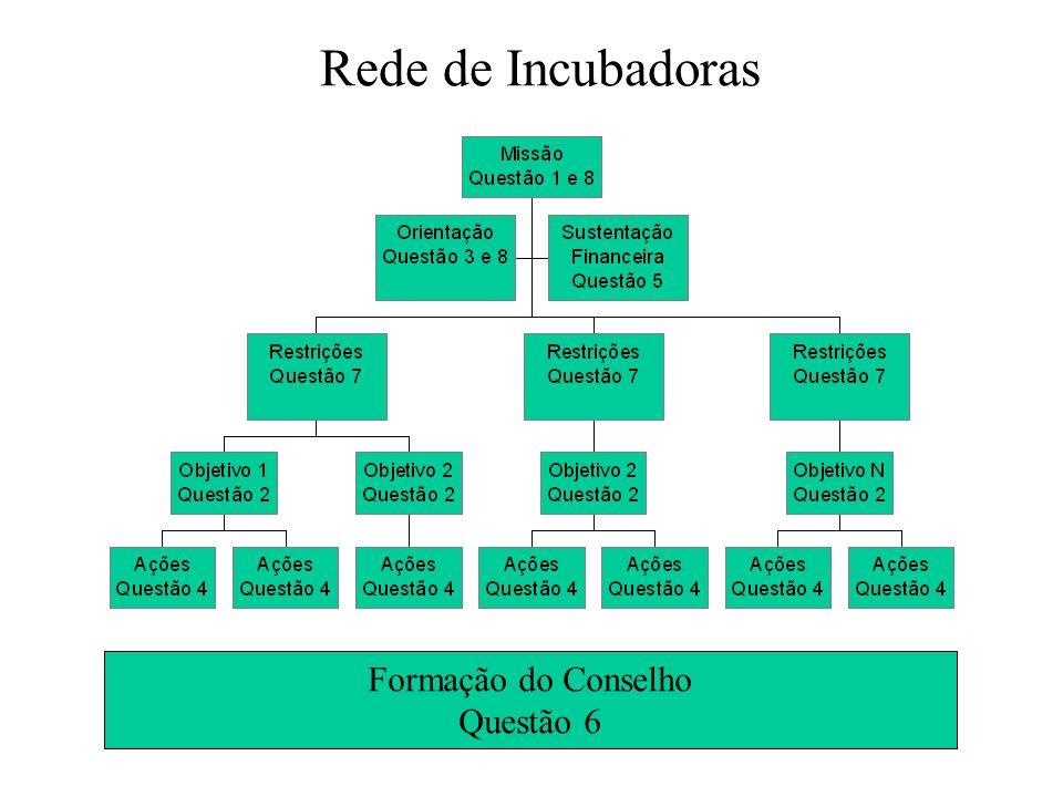 Rede de Incubadoras Formação do Conselho Questão 6