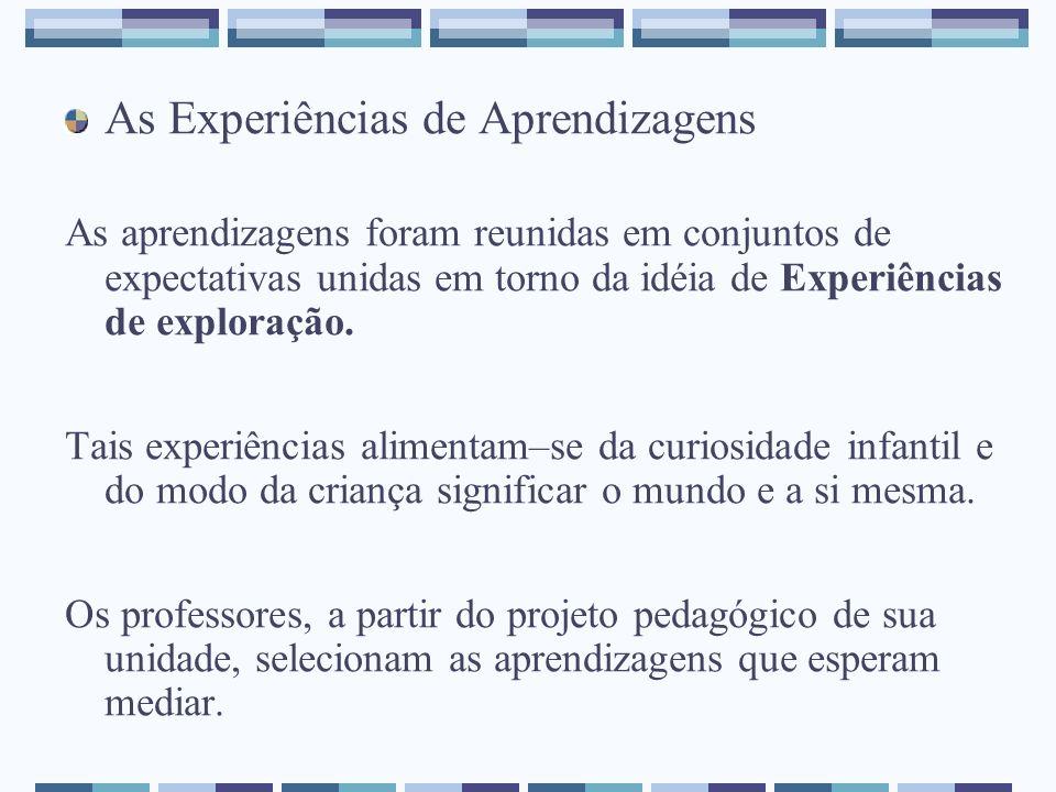 As Experiências de Aprendizagens As aprendizagens foram reunidas em conjuntos de expectativas unidas em torno da idéia de Experiências de exploração.