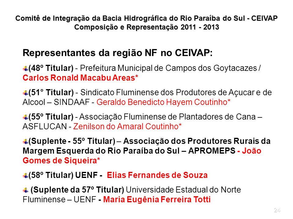 24 Comitê de Integração da Bacia Hidrográfica do Rio Paraíba do Sul - CEIVAP Composição e Representação 2011 - 2013 Representantes da região NF no CEI