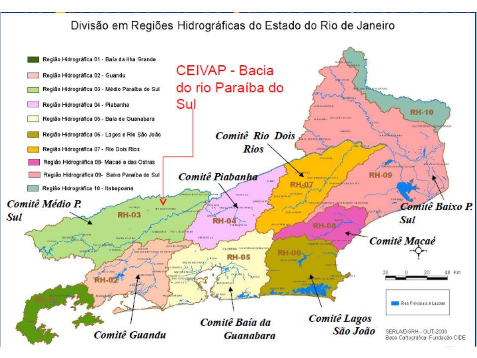 25 Comitês e Consórcios Instalados no Bacia do Paraíba do Sul