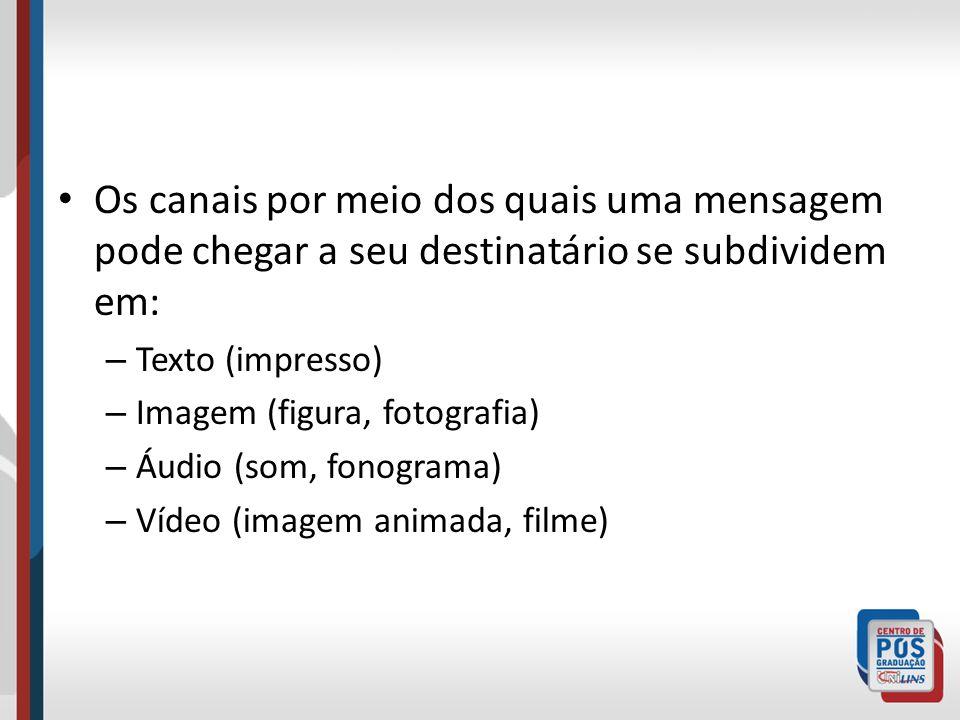 Os canais por meio dos quais uma mensagem pode chegar a seu destinatário se subdividem em: – Texto (impresso) – Imagem (figura, fotografia) – Áudio (s
