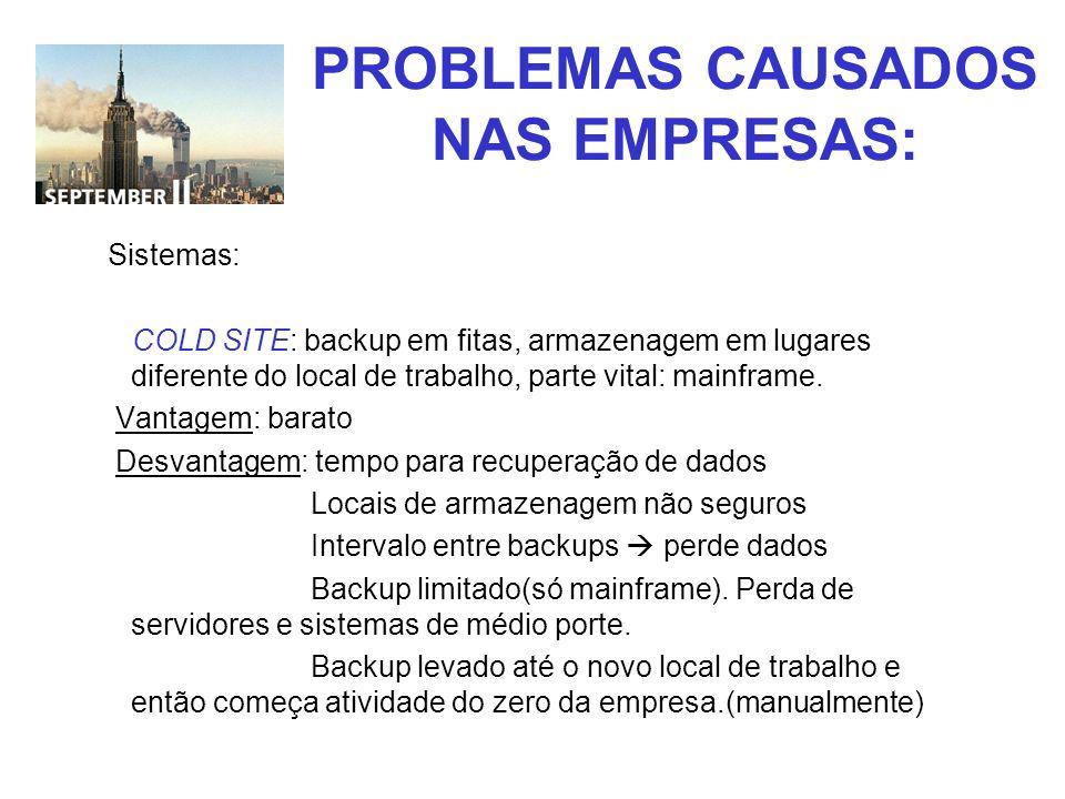 PROBLEMAS CAUSADOS NAS EMPRESAS: Sistemas: COLD SITE: backup em fitas, armazenagem em lugares diferente do local de trabalho, parte vital: mainframe.
