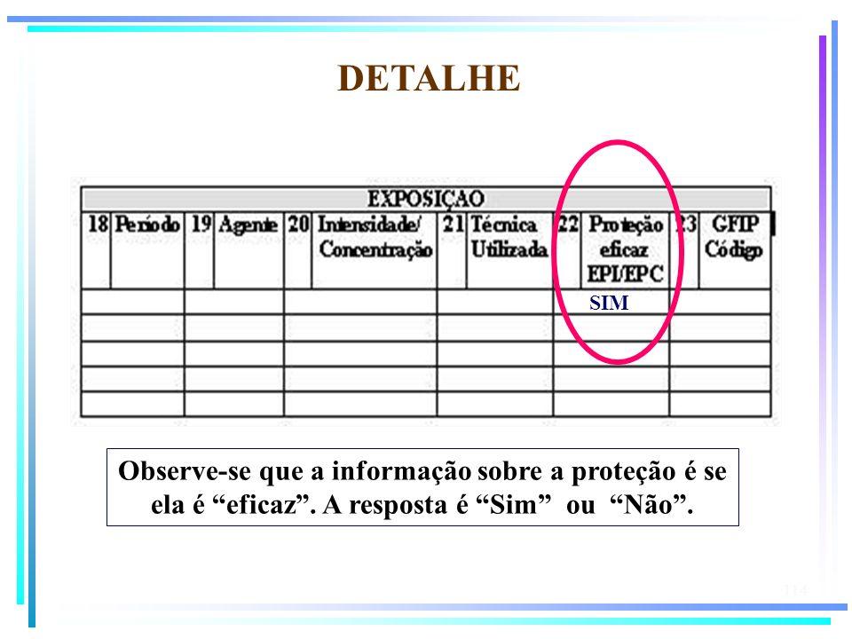 114 DETALHE SIM Observe-se que a informação sobre a proteção é se ela é eficaz. A resposta é Sim ou Não.