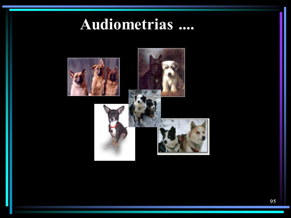 95 Audiometrias....