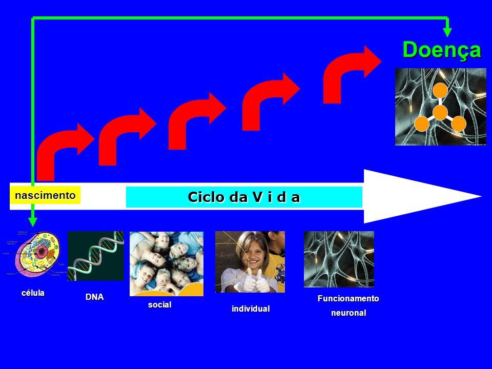 Ciclo da V i d a Doença individual social DNA célula Funcionamentoneuronal nascimento