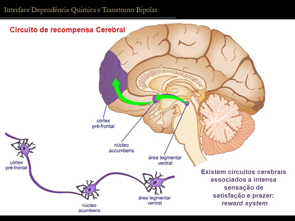 Interface Dependência Química e Transtorno Bipolar DQ + THB Circuito de recompensa Cerebral Existem circuitos cerebrais associados a intensa sensação