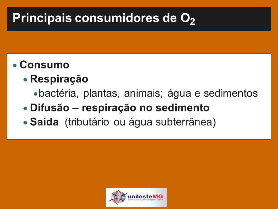 Principais consumidores de O 2 Consumo Respiração bactéria, plantas, animais; água e sedimentos Difusão – respiração no sedimento Saída (tributário ou água subterrânea)