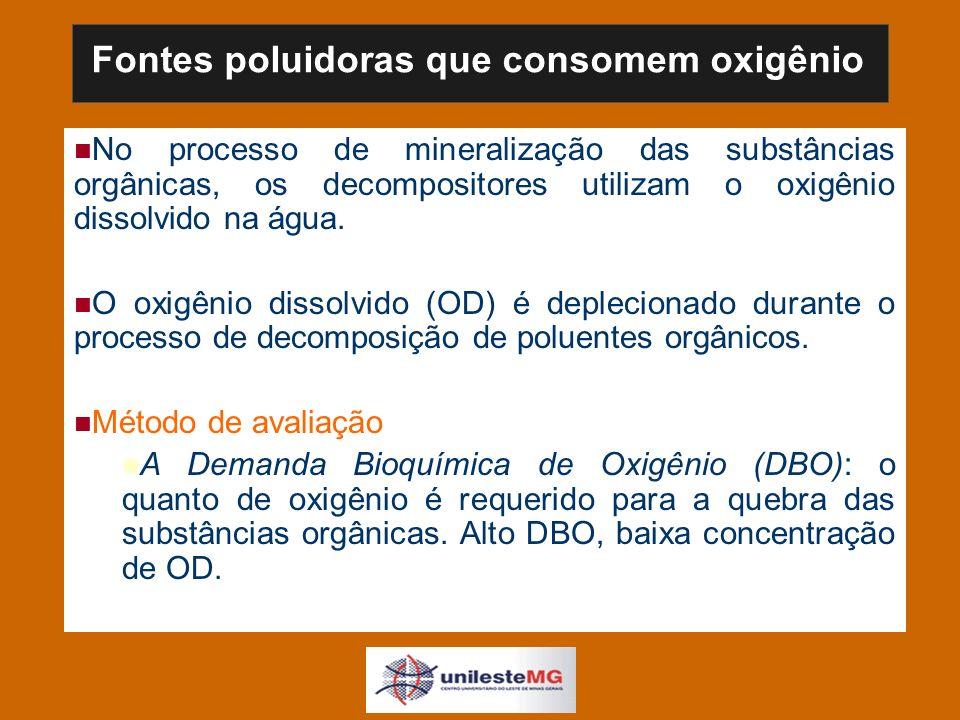 No processo de mineralização das substâncias orgânicas, os decompositores utilizam o oxigênio dissolvido na água.