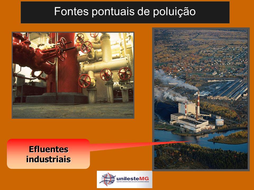 Fontes pontuais de poluição Efluentes industriais