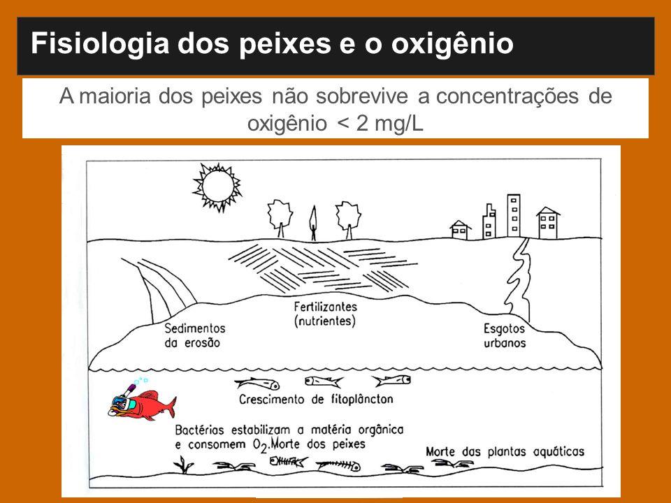 A maioria dos peixes não sobrevive a concentrações de oxigênio < 2 mg/L Fisiologia dos peixes e o oxigênio