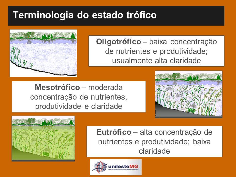 Terminologia do estado trófico Oligotrófico – baixa concentração de nutrientes e produtividade; usualmente alta claridade Mesotrófico – moderada concentração de nutrientes, produtividade e claridade Eutrófico – alta concentração de nutrientes e produtividade; baixa claridade