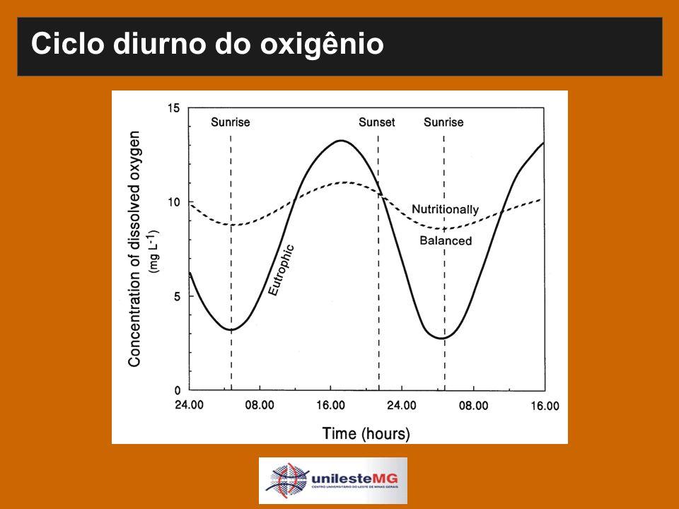 Ciclo diurno do oxigênio