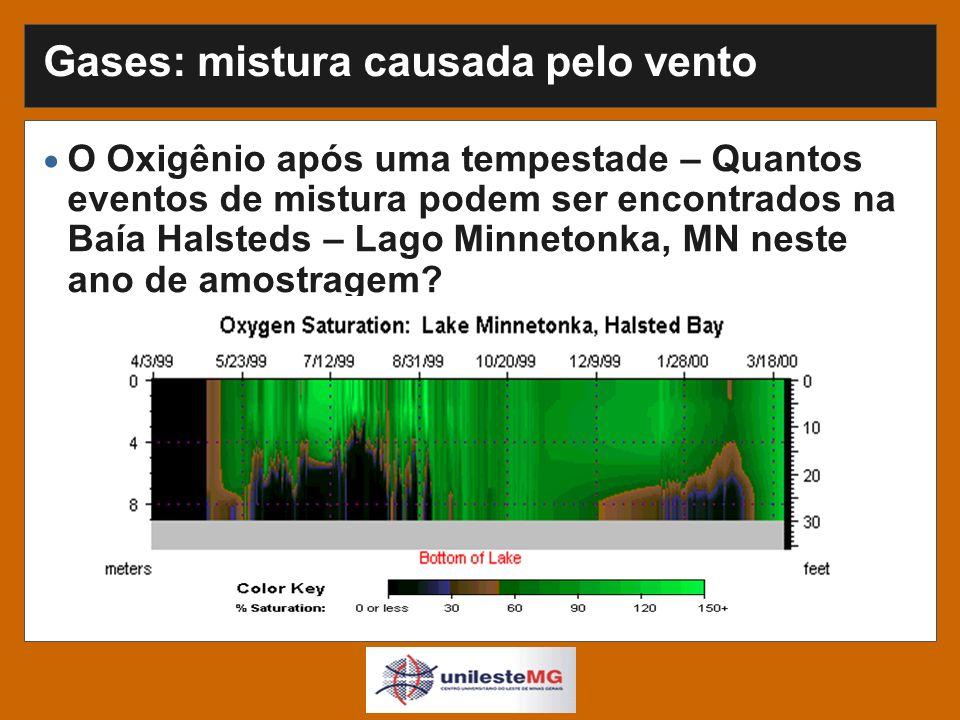 Gases: mistura causada pelo vento O Oxigênio após uma tempestade – Quantos eventos de mistura podem ser encontrados na Baía Halsteds – Lago Minnetonka, MN neste ano de amostragem?