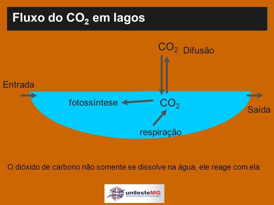 Fluxo do CO 2 em lagos Difusão fotossíntese CO 2 respiração Entrada Saída O dióxido de carbono não somente se dissolve na água, ele reage com ela