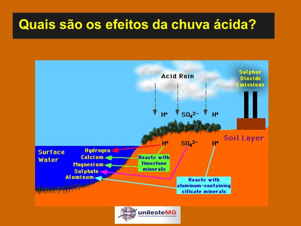 Quais são os efeitos da chuva ácida. U.S.