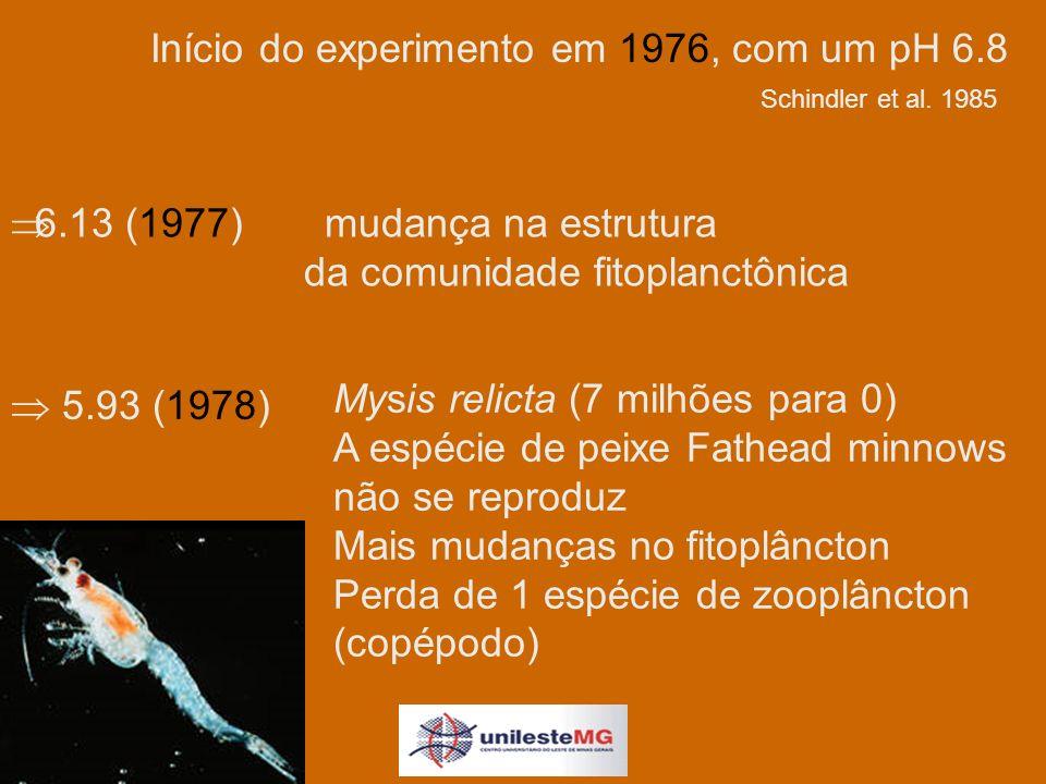 Mysis relicta (7 milhões para 0) A espécie de peixe Fathead minnows não se reproduz Mais mudanças no fitoplâncton Perda de 1 espécie de zooplâncton (copépodo) Início do experimento em 1976, com um pH 6.8 6.13 (1977)mudança na estrutura da comunidade fitoplanctônica 5.93 (1978) Schindler et al.