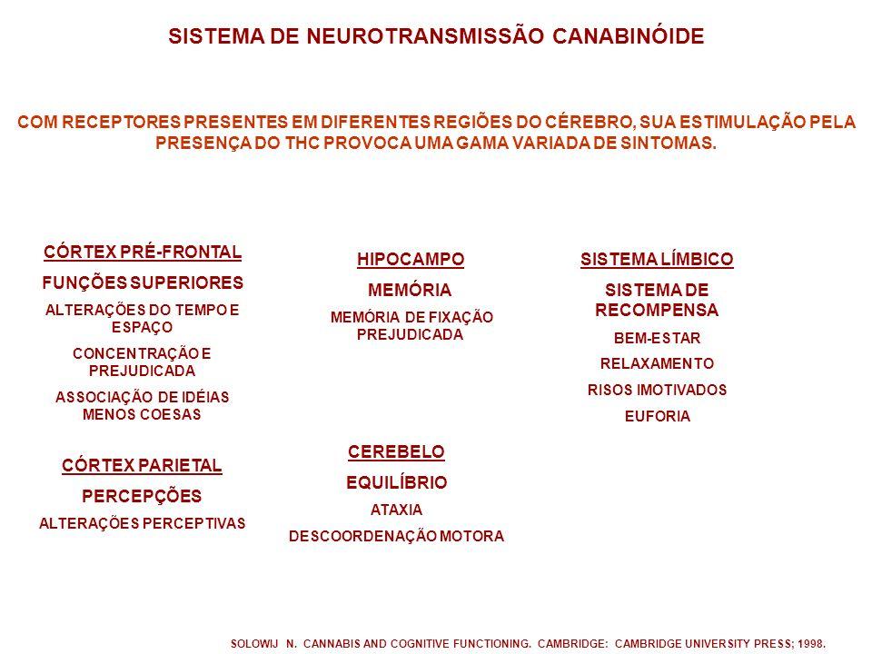 SISTEMA DE NEUROTRANSMISSÃO CANABINÓIDE CEREBELO EQUILÍBRIO ATAXIA DESCOORDENAÇÃO MOTORA HIPOCAMPO MEMÓRIA MEMÓRIA DE FIXAÇÃO PREJUDICADA CÓRTEX PRÉ-FRONTAL FUNÇÕES SUPERIORES ALTERAÇÕES DO TEMPO E ESPAÇO CONCENTRAÇÃO E PREJUDICADA ASSOCIAÇÃO DE IDÉIAS MENOS COESAS SISTEMA LÍMBICO SISTEMA DE RECOMPENSA BEM-ESTAR RELAXAMENTO RISOS IMOTIVADOS EUFORIA CÓRTEX PARIETAL PERCEPÇÕES ALTERAÇÕES PERCEPTIVAS SOLOWIJ N.