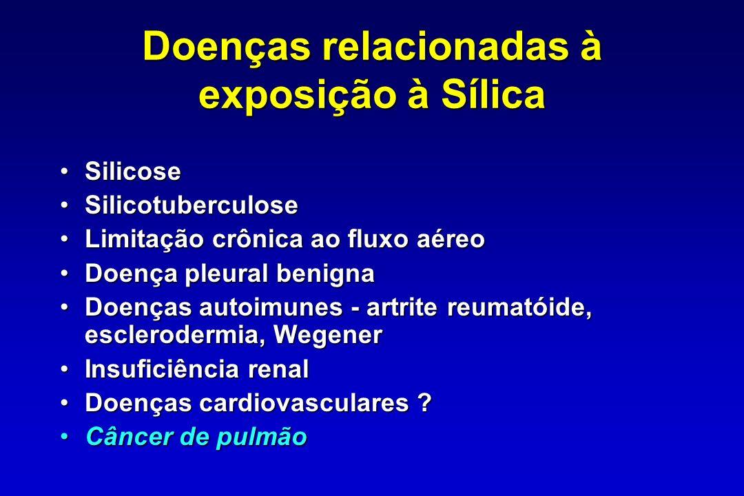 Finkelstein MM Am J Ind Med, 2000 Objetivo: avaliar a relação entre exposição e resposta para sílica, silicose e câncer de pulmão Objetivo: avaliar a relação entre exposição e resposta para sílica, silicose e câncer de pulmão Método: revisão quantitativa da literatura computadorizada (Hnizdo - 91 e 97) e Checkoway (97) Método: revisão quantitativa da literatura computadorizada (Hnizdo - 91 e 97) e Checkoway (97) Resultados: para exposição a 0,1mg/m 3 Resultados: para exposição a 0,1mg/m 3 O risco de silicose é estimado em 25% após 30 anos de exposição O risco de silicose é estimado em 25% após 30 anos de exposição O risco de câncer de pulmão está aumentado em 30% ou mais O risco de câncer de pulmão está aumentado em 30% ou mais