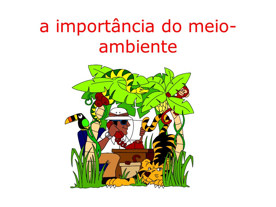 a importância do meio- ambiente