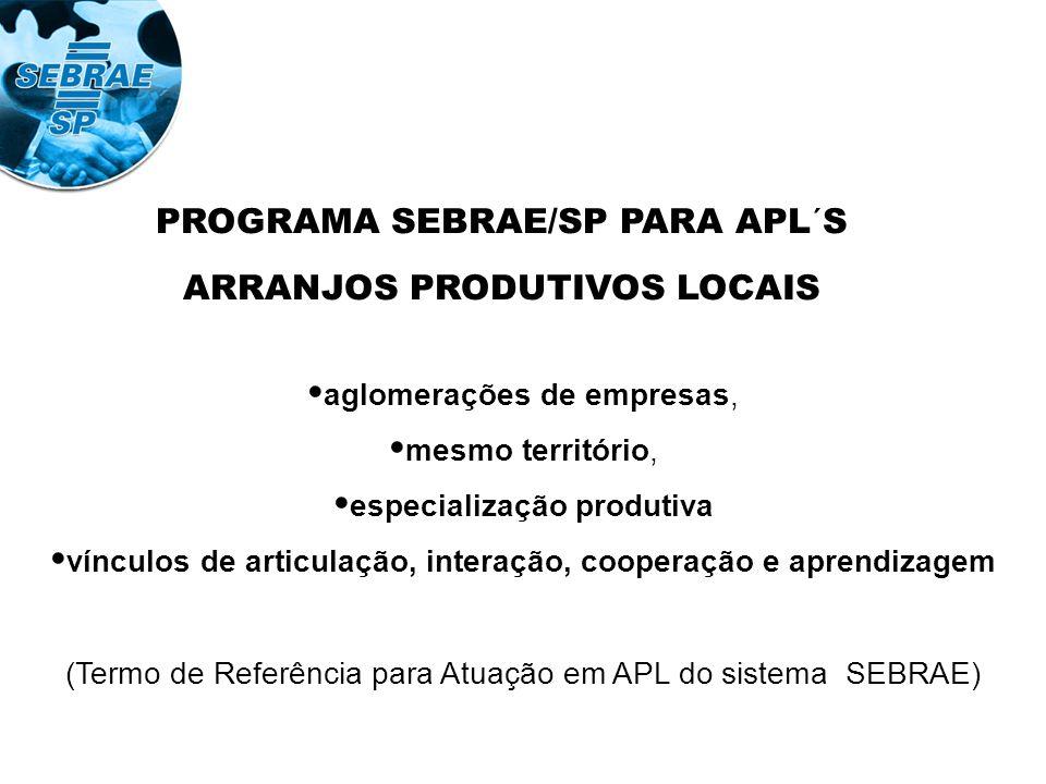 PROGRAMA SEBRAE/SP PARA APL´S ARRANJOS PRODUTIVOS LOCAIS aglomerações de empresas, mesmo território, especialização produtiva vínculos de articulação, interação, cooperação e aprendizagem (Termo de Referência para Atuação em APL do sistema SEBRAE)