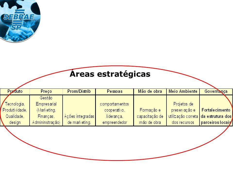 Áreas estratégicas